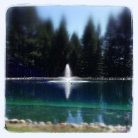 Pema Osel Ling Pond