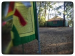a green prayer flag and a green yurt in the green forest