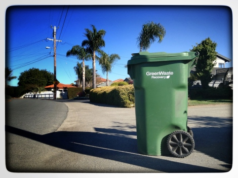 green waste in a green bin