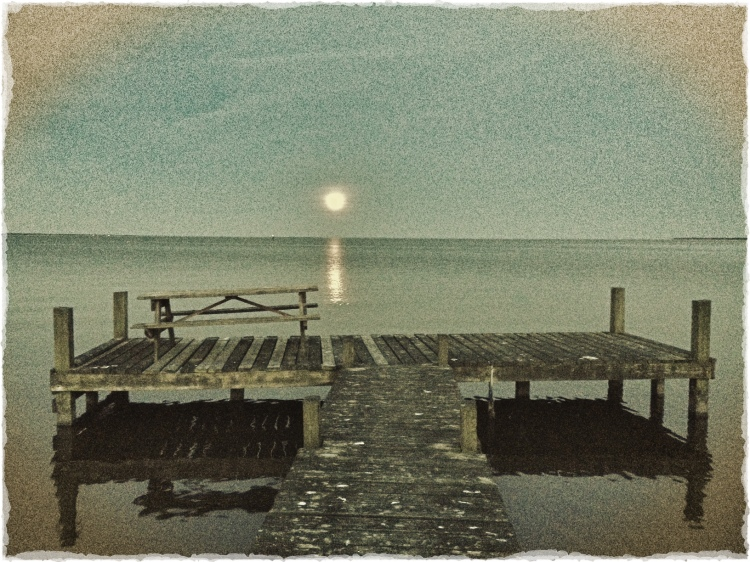 Moonlight Over the Sound